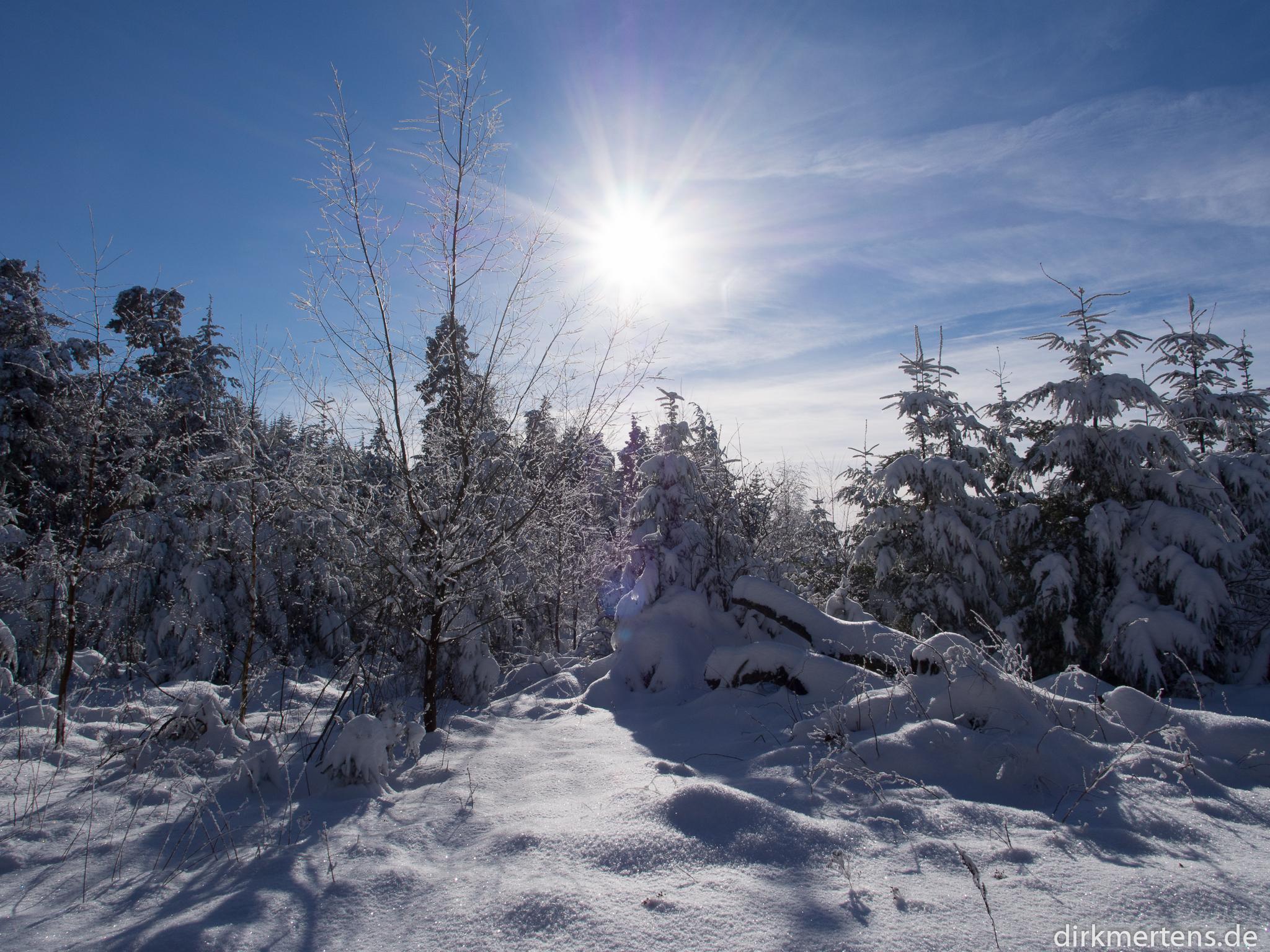 Loffenau / Schwarzwald